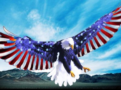 Veterans, Veterans Party of America, State of the Union, Republicans, Democrats, Libertarians, Obama, President, Election, Election 2016, Politics, Political Party